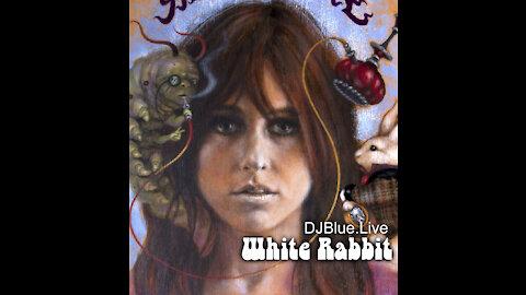 White Rabbit | DJ Blue