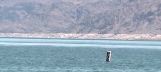 Dropping Lake Mead levels prompting further outdoor water conservation
