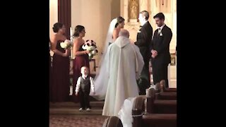 Kids add some comedy to a wedding!! Ring Bearer Fails