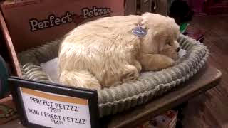 Christmas Toy Gift Ideas 2020 Perfect Petzzz Sleeping Puppy