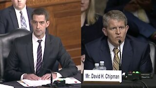 """Tom Cotton Clashes with Biden ATF Nominee Over """"Assault Weapon"""" Definition"""