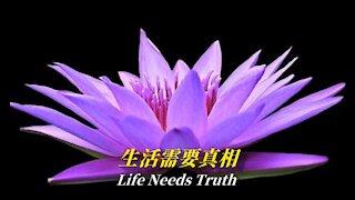 Life Needs Truth | Truth Media