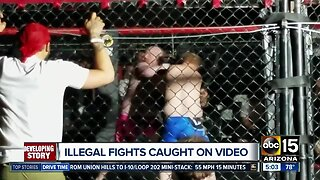Illegal fights caught on video