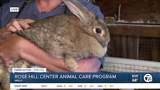 Rose Hill Animal Care Program