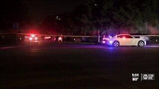 19-year-old arrested, accused of 3 murders in Hillsborough County, deputies say