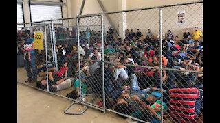 Biden's DHS secretary says there's no crisis at border