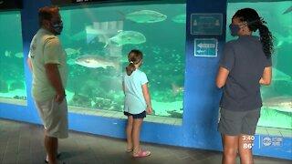 Shark trainer leading the way for minority women in aquarium biology
