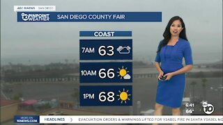 ABC 10News Pinpoint Weather for Sun. July 4, 2021