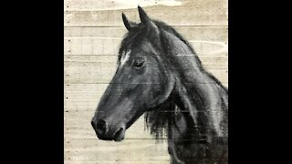 Horse Painting - Acrylic Painting Time Lapse