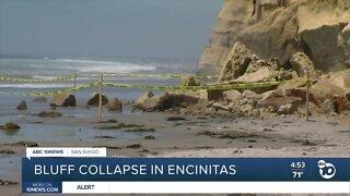 Bluff failure along Encinitas beach, a year after deadly collapse