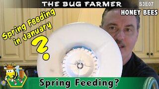 Spring Feeding - Feeding the bees