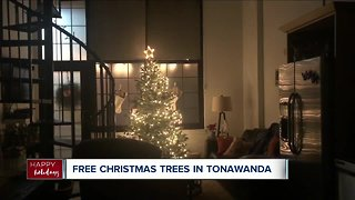Free Christmas tree giveaway for those in need