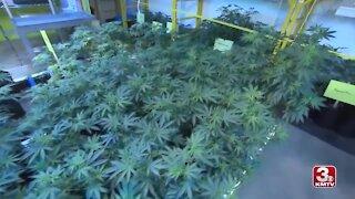 Nebraska Supreme Court to decide on whether medical marijuana goes on ballot