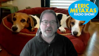 John Zmirak of Stream.org Exposes What's Going On At Some Rescue Shelters
