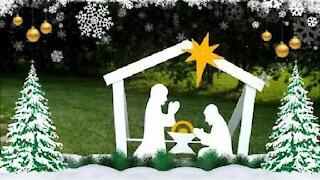 DIY Christmas Oudoor Nativity Beta Program
