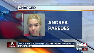 Cape Coral hit and run driver charged