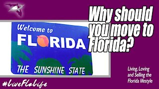 Why Should You Move to Florida?
