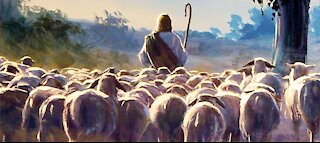 The 'Shepherd Crisis' and the Abomination of Desolation!