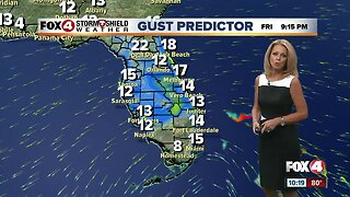 Rain & Gusty Winds Will Arrive for the Weekend