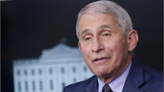 Fauci Says Christmas And New Years Will Have Restrictions