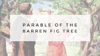 10.7.20 Wednesday Lesson - PARABLE OF THE BARREN FIG TREE