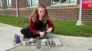 Schools throughout Stark County handing out seed packets to kids
