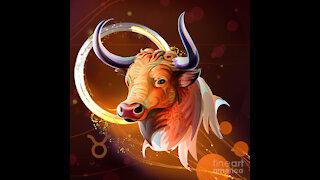 Taurus, Let's Peek Inside Their Head