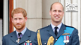 Prince Harry says he has tried to help 'trapped' brother Prince William