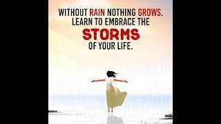 Without rain [GMG Originals]
