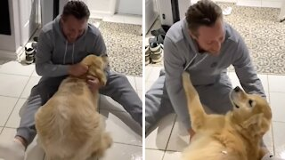 Ecstatic dog emotionally reunited with owner after ten months away