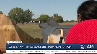 One Tank Trips: Walters' Pumpkin Patch