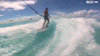 Delfin blir med på en wakesurfing-økt
