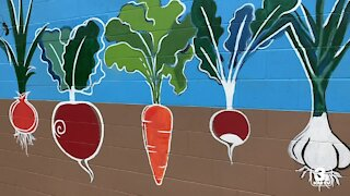 Local nonprofit helps the community through agriculture