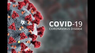 Part 3 of a 4 part documentary from Dutch researcher Janet Ossebaard about COVID-19