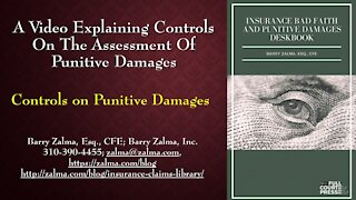 A Video Explaining the Controls on Punitive Damages