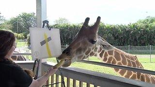 Giraffe paints banana and duct tape masterpiece