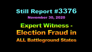 Expert Witness - Election Fraud in All Battleground States , 3376