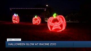 Halloween themed drive-thru light display at the Racine Zoo
