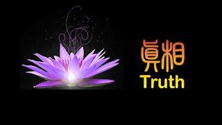 生命 需要 真相 Life Needs Truth.