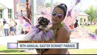 16th annual 'Easter Bonnet Pet Parade' held in Delray Beach