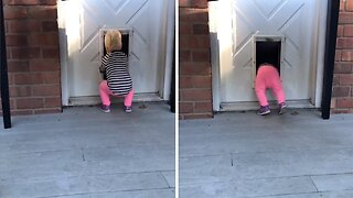 TODDLER DISCOVERS SHE FITS THROUGH DOG FLAP AND NOW CANNOT STOP USING IT