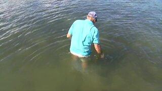 WPTV takes tour of St. Lucie Estuary during National Estuaries Week