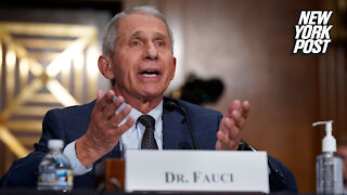 Anthony Fauci apologizes for latest gaffe in COVID analysis