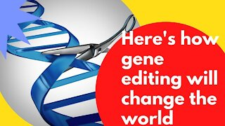 Gene editing and the future it holds