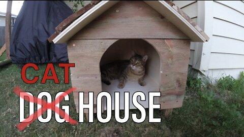 Cat House Build