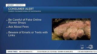 Contact 7 alert: CBI warning about fake online flower shops