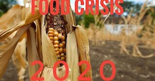 Food Crisis: The Coming Disaster