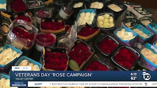 'Rose campaign' launched at North County cemetery
