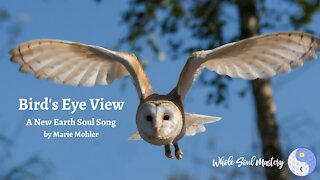 Bird's Eye View ~ A New Earth Soul Song