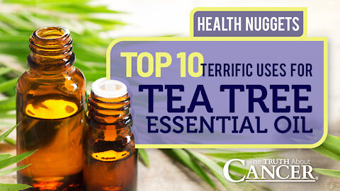 The Truth About Cancer Presents: Health Nuggets - Top 10 Terrific Uses For Tea Tree Essential Oil